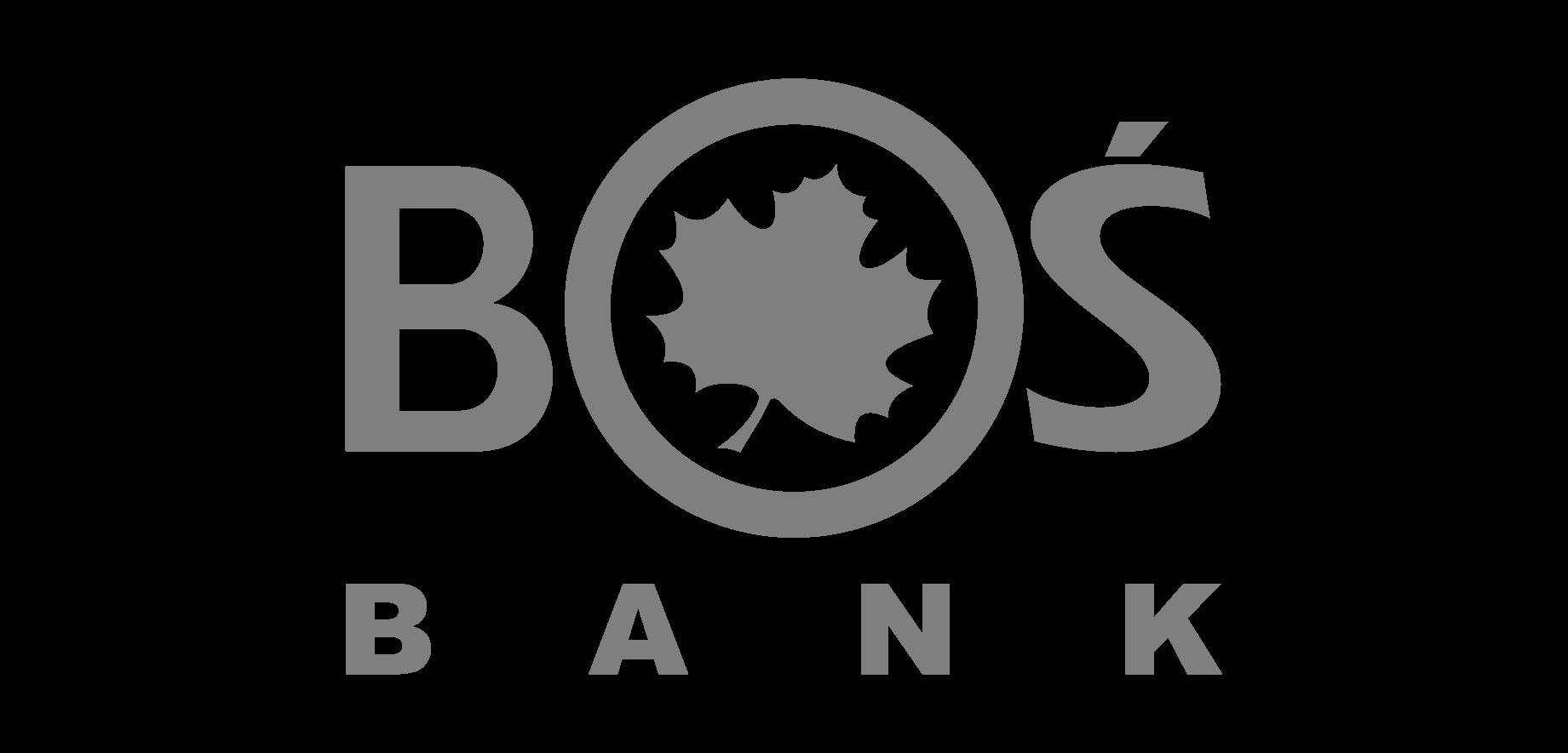 Sisoft - analiza bezpieczeństwa sieci dla BOŚ Bank